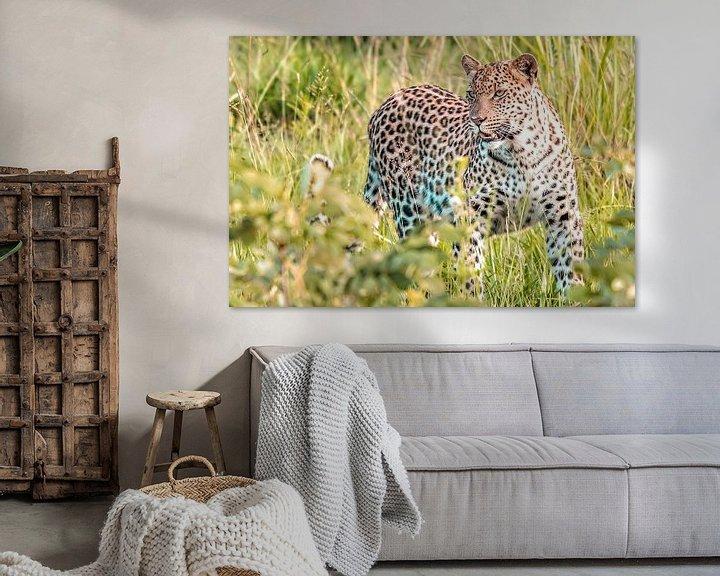 Sfeerimpressie: Luipaard van Trudy van der Werf