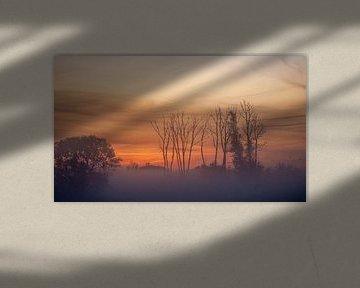 Misty Sunrise van Thomas Depauw
