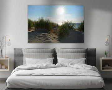 Dunes de la mer du Nord en Zélande sur Claudia Evans