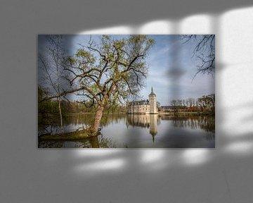 Horst castle van Thomas Depauw