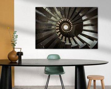 Spiraal van David Van Den Dooren