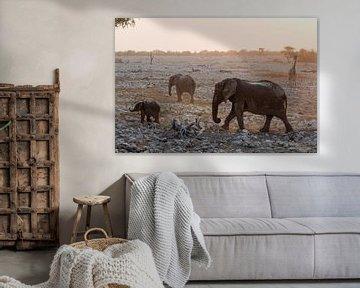 Elefanten und eine Giraffe in Etosha, Namibia von Menso van Westrhenen