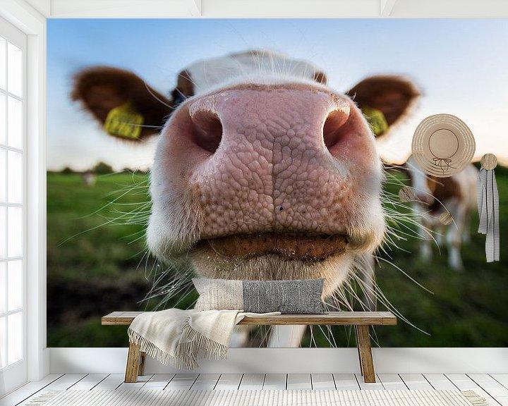 Sfeerimpressie behang: Kiekeboe! van Max ter Burg Fotografie