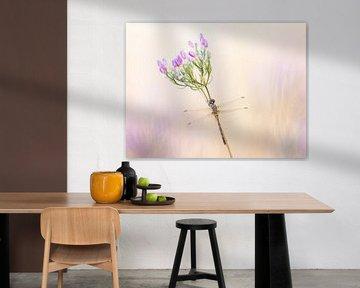 Libel in pastelkleuren van Judith Borremans
