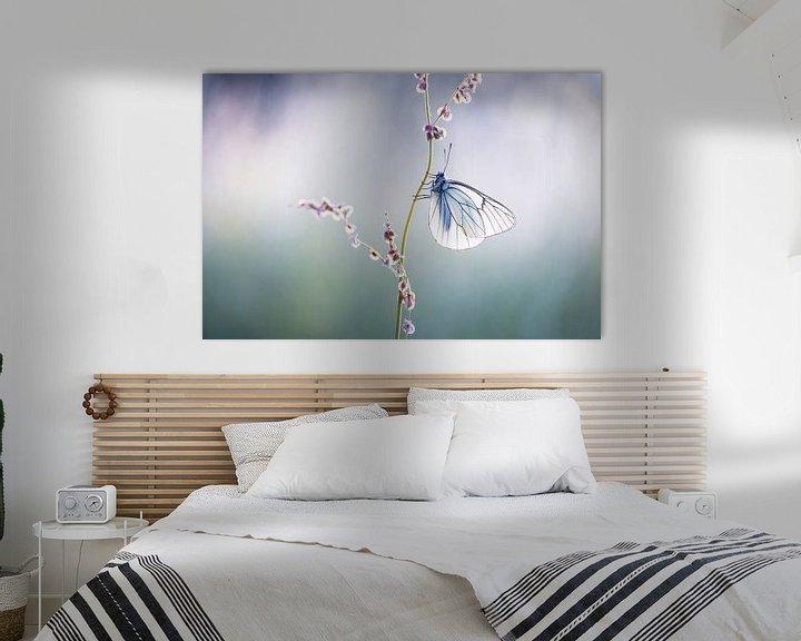 Beispiel: Groß geäderter weißer Schmetterling von Judith Borremans