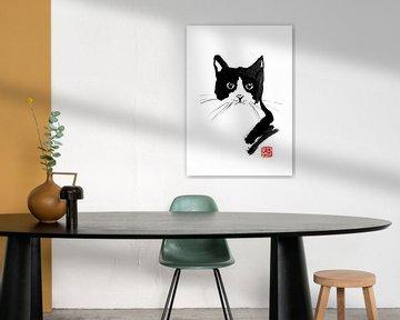streunende Katze von philippe imbert