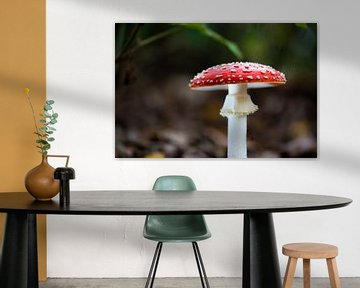 perfecte paddenstoel van Tania Perneel