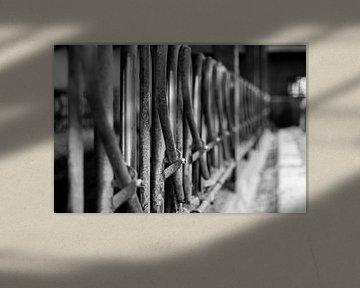 Zaun von Frank Bison