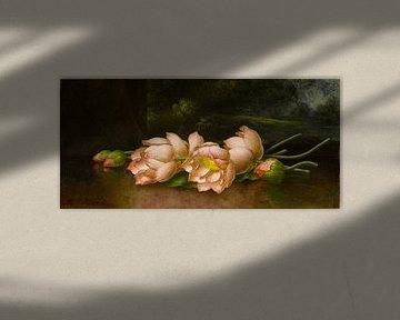 Lotusblüten, Martin Johnson Heade