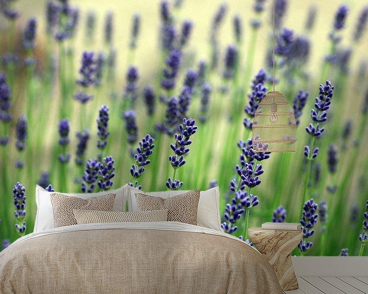 Sfeerimpressie behang: Echte lavendel, Lavandula angustifolia van Renate Knapp
