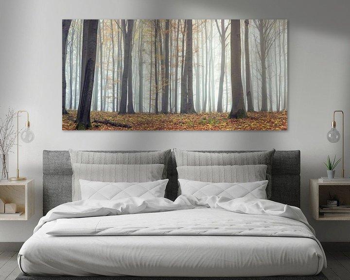 Beispiel: Zauberhafter Wald im Panorama von Tobias Luxberg