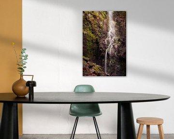 Zicht op de waterval van Burgbach van Severin Frank Fotografie