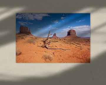 Monument Valley Navajo Tribal Park, Arizona USA von Gert Hilbink