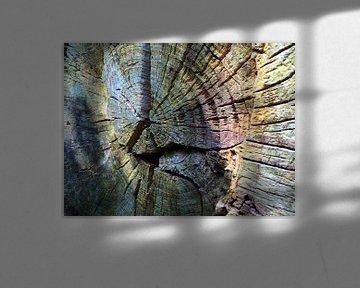 Fotografisches Detail eines gefällten Baumes von Ton Kuijpers