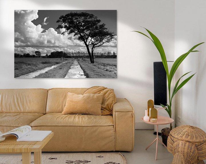Sfeerimpressie: Wolken, boom en pad van robert wierenga