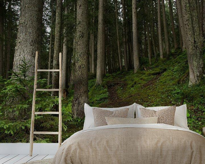 Sfeerimpressie behang: Wandelen door het Zwitsers woud van André Hamerpagt