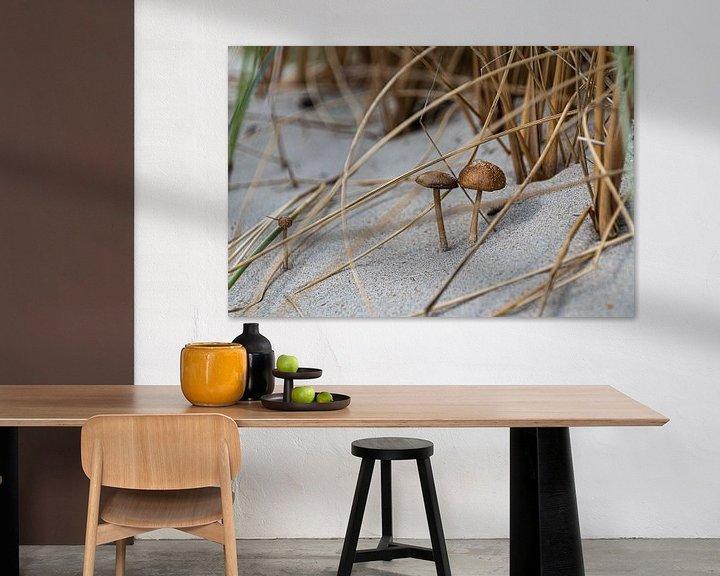 Sfeerimpressie: Duinpaddenstoelen (2) van Ingrid Aanen
