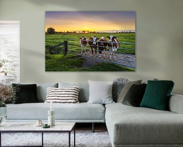 Nieuwsgierige koeien, Marsum (Gr.) van Ton Drijfhamer