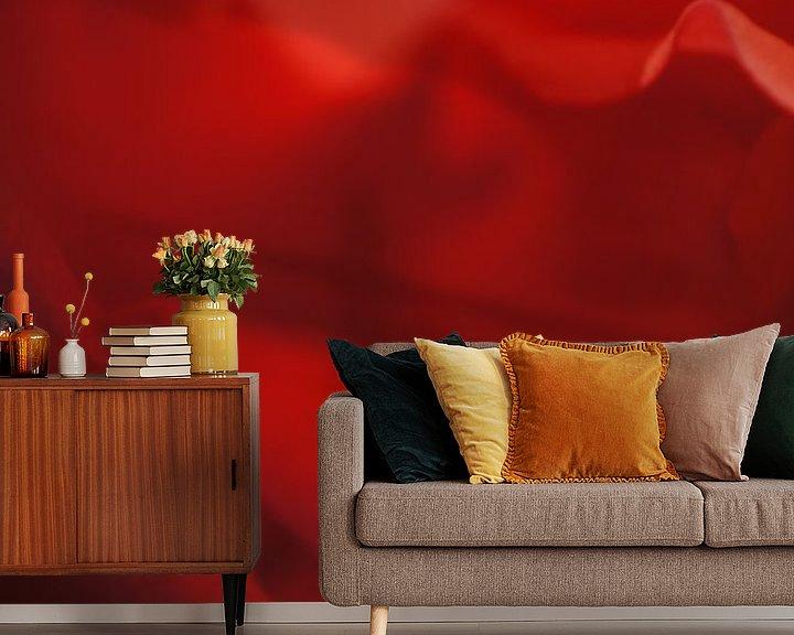 Beispiel fototapete: Rose III von Tina Hartung
