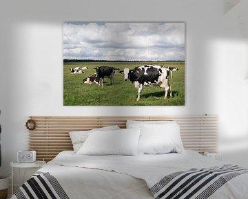 Koeien en wolkenluchten van Carola van Rooy
