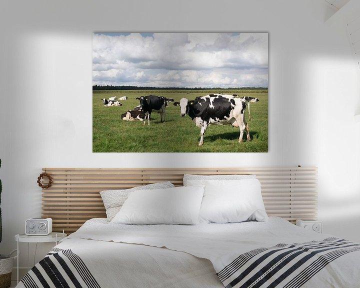 Sfeerimpressie: Koeien en wolkenluchten van Carola van Rooy