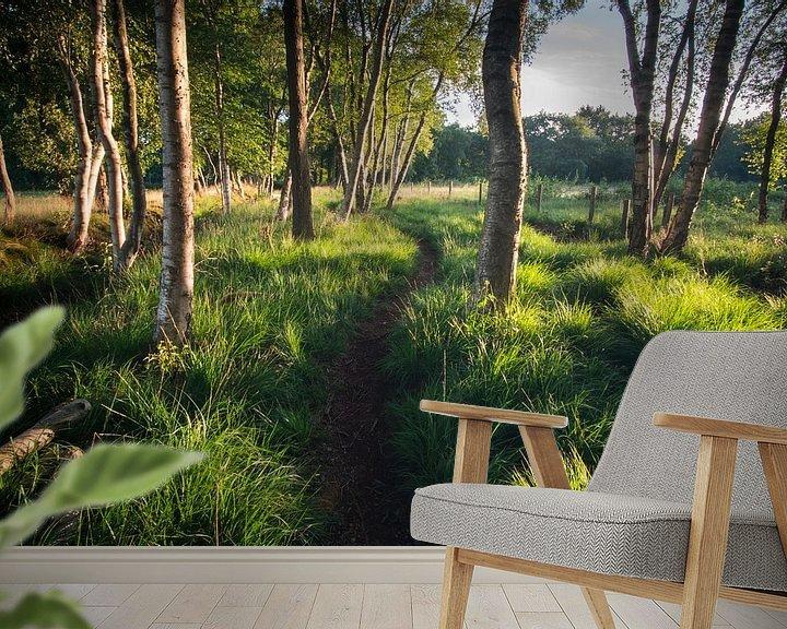 Beispiel fototapete: Waldweg in der Morgensonne von Hessel de Jong