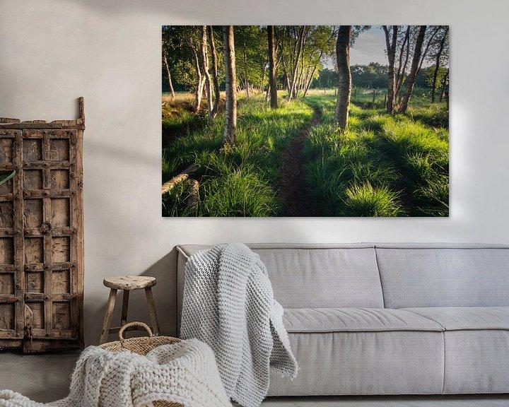 Beispiel: Waldweg in der Morgensonne von Hessel de Jong