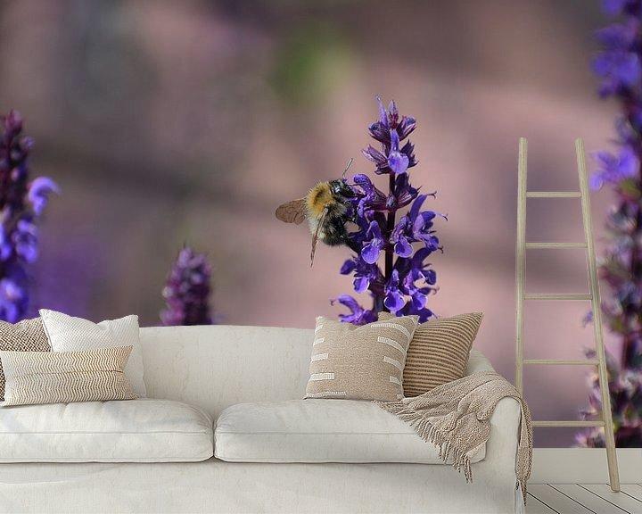 Beispiel fototapete: Biene auf Salvia von Roland van Tilborg