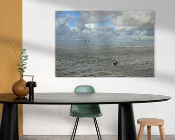 Surfen von Erik Reijnders