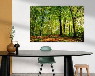 Forêt d'automne sur Günter Albers