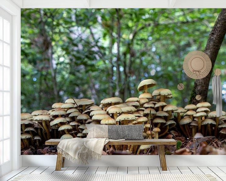 Beispiel fototapete: Pilz-Zwergendorf. von Anjo ten Kate