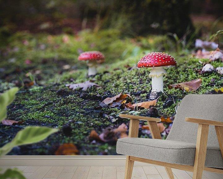 Sfeerimpressie behang: Vliegezammen langs het bospad van Fotografiecor .nl