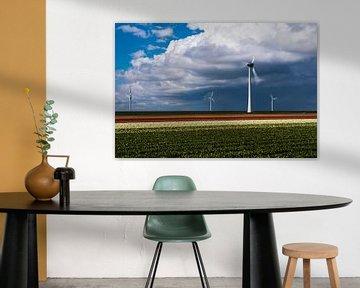 Tulpenfeld und Windmühlen von Rick Kloekke