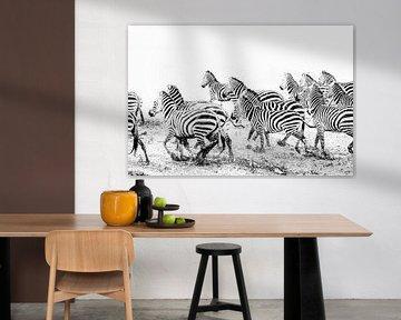 Laufende Zebras in schwarz-weiß von Krijn van der Giessen