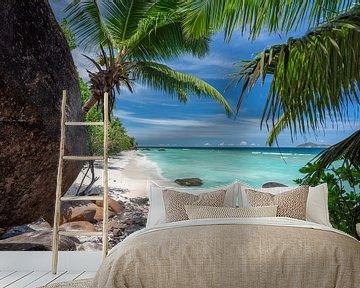 Tropischer Strand der Seychellen von Krijn van der Giessen