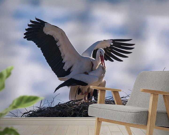 Beispiel fototapete: Storchenpaar im Nest von Tobias Luxberg