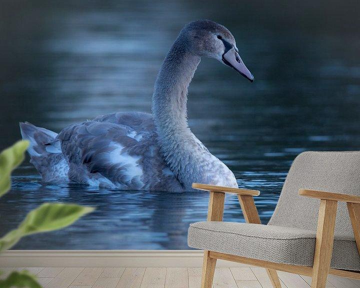 Sfeerimpressie behang: Zwaan bij zonsopkomst van Gijs Verbeek