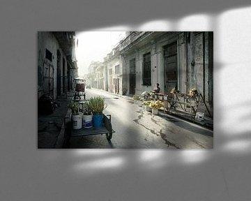 Havanna, Kuba im Morgengrauen. Typische Wohnstraße im Zentrum mit geparkten Autos und sehr wenig Ver von Tjeerd Kruse