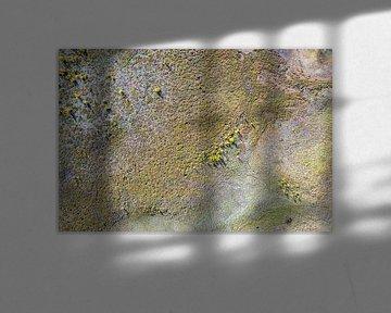 Naturmuster von Jeroen Kleiberg
