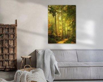 Mystical Mastforest Breda van Saskia Dingemans