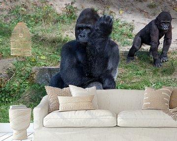 Gorilla mannetje met jong op de achtergrond van Joost Adriaanse