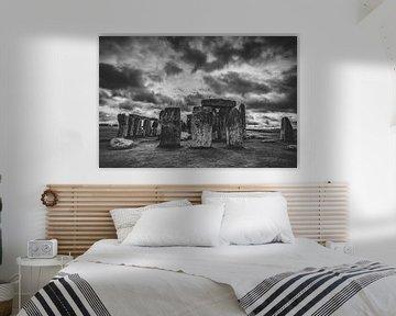 De woonplaats van kraaien van Joris Pannemans - Loris Photography