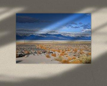 Woestijn met bergen van Robert Styppa