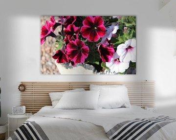 Bloemen van Rieky Mooren