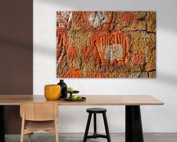 De stijl van India van de textuurkunst op de muur, India van Tjeerd Kruse