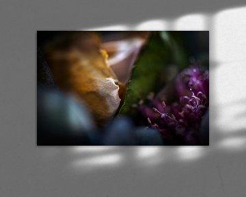 Detail eines Straußes aus Rosen und blühenden Zwiebeln von Jenco van Zalk