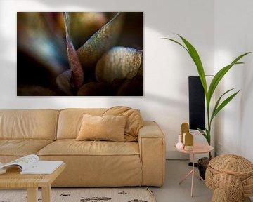 Bloembladeren van een Hortensia als abstracte vormen van Jenco van Zalk