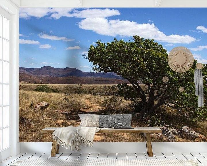 Sfeerimpressie behang: Wandelpad in Zuid-Afrika van Discover Dutch Nature