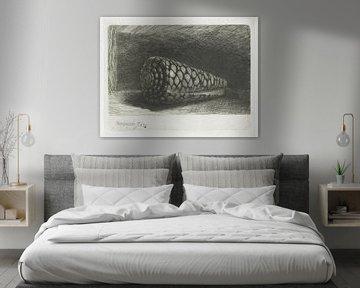 Die Schale (Conus marmoreus), Rembrandt van Rijn