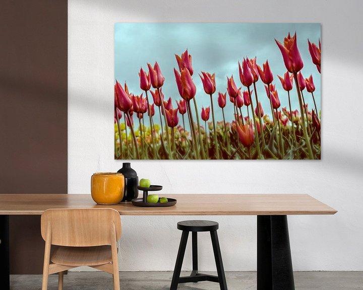 Sfeerimpressie: Tulpen in Holland van VanEis Fotografie